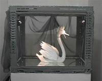 Joulia-Strauss-S0113-Swan Robot5.jpg