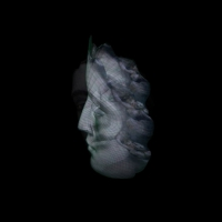 Joulia-Strauss-S0087- Romantikhybride 1.jpg